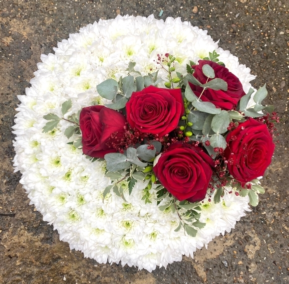 Chrysanthemum Massed Red Rose Posy Pad