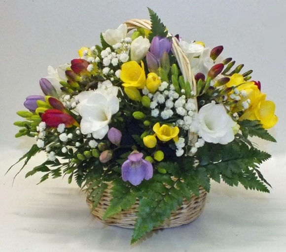 Scented Freesias Basket