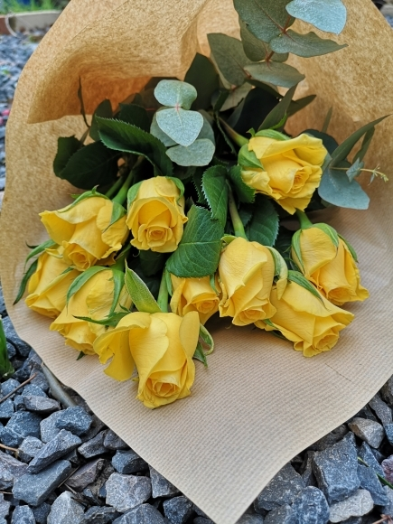 Yellow Rose Wrap